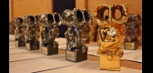 Awards - TIFF 14'th edition